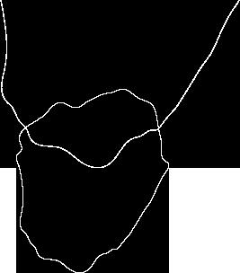 line-shape
